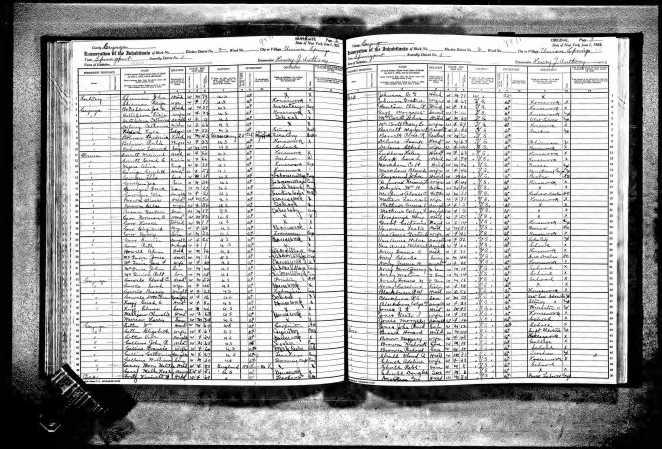 1925 Census